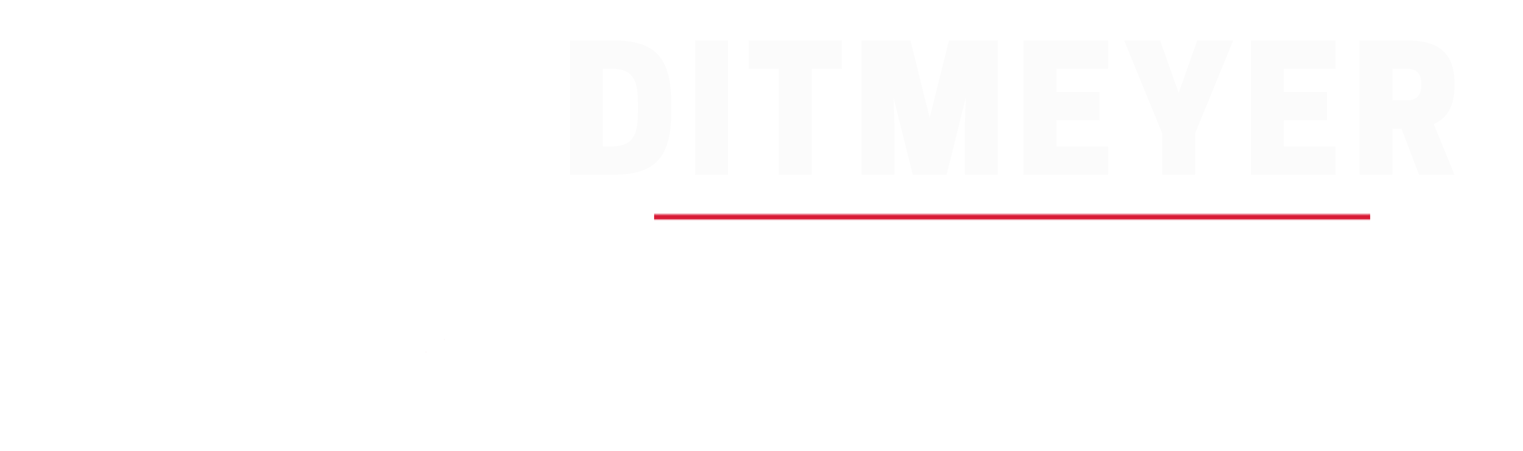 Ditmeyer Consulting